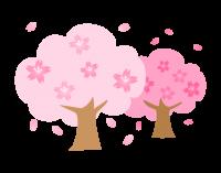 sakura_tree_63-768x603